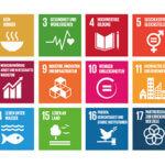 Grafik: die 17 nachhaltigen Entwicklungsziele
